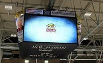 Ice Rink Multi-Screen