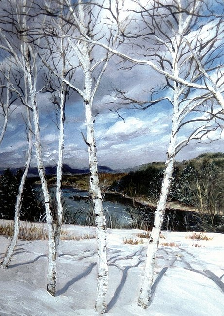 A thin line of young, white birch trees close up on a snowy ridge stand courageously before a dark expanse of riverbank and forested hillsides under a cloudy sky.