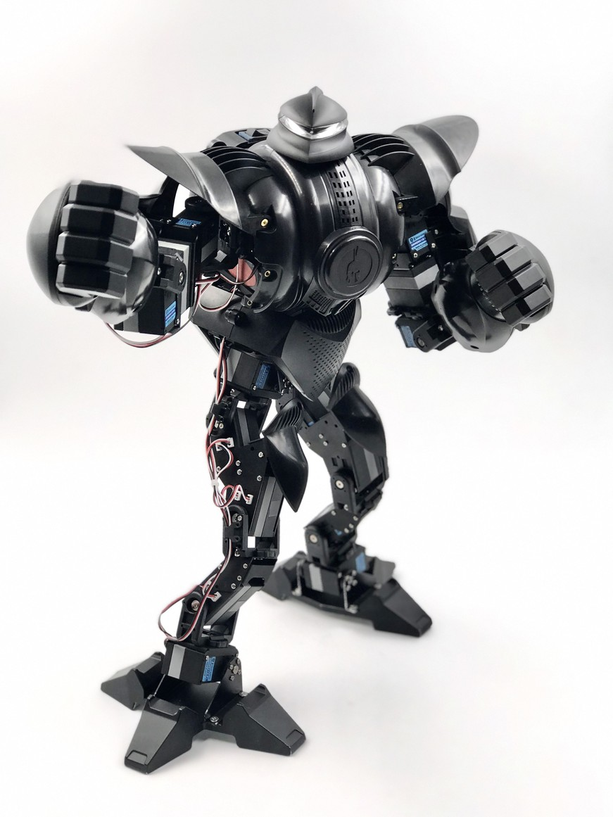 Personal robot or not i robot essay