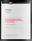 white paper delivering an efficient internet of things